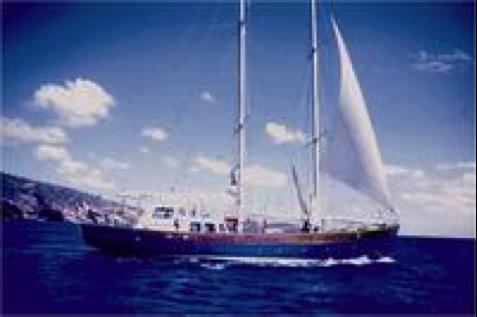 photo of the Makrele