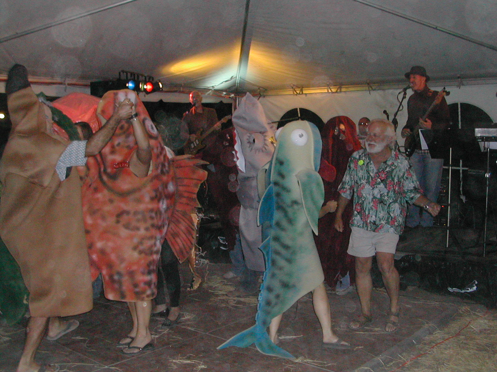 Costumes Dancing at Greg's Retirement Party - Tequila, Fish, squid, fish & Greg Sea ToadDSCN0038