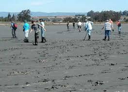 Elkhorn Slough mud stompers