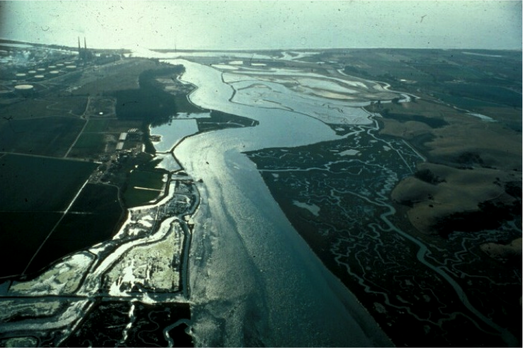 Elkhorn Slough from air