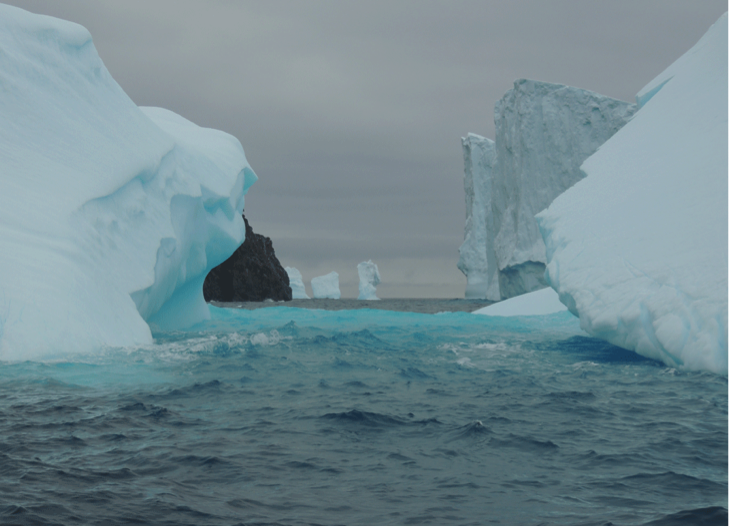 icebergs_photo by Tara Pastuszek
