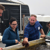 Responsible Aquaculture Lures Support in California
