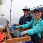 Ryan F. and Erin S. measuring a lingcod on a CCFRP trip