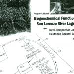 Biogeochemical Function of the San Lorenzo River Lagoon
