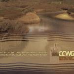 CCWG Brochure