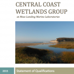 CCWG Statement of Qualifications