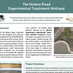 Molera Road Treatment Wetland Summary