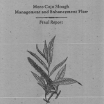 Moro Cojo Slough Management and Enhancement Plan Final Report