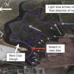 Moro Cojo Slough NPS Implementation Project