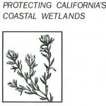Protecting Californias Coastal Wetlands - A Procedural Manual