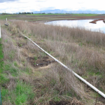 Restoring Natural Water Systems in Rural Residential Landscapes