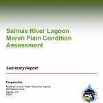 Salinas River Lagoon Marsh Plain Condition Assessment