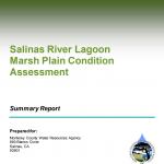 Salinas River Lagoon Marsh Plain Condition Assessment