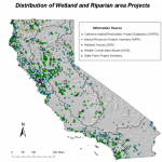 Wetland and Riparian Restoration Management Measure Tracking - Summary Report