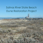 Salinas River State Beach Dune Restoration Project - Final Restoration and Monitoring Report
