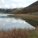 Assessment of Select Estuaries in Marin County
