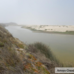 Considerations for Management of the Mouth State of California's Bar-built Estuaries