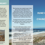 Dune Restoration for a Changing Climate - Salinas River SB Project