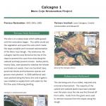 Calcagno 1  Moro Cojo Restoration Project