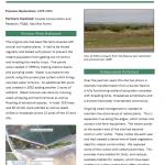 Tottino Ponds Moro Cojo Restoration Project