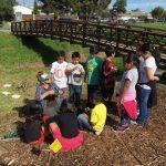 School Yard Habitat Project - Santa Rita Elementary School