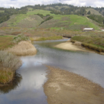 Final Report: Development of a Bar-built estuary monitoring system and resource management framework tool for California State Parks