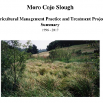 Moro Cojo Slough Agricultural Management Practice and Treatment Project Summary