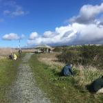 North Monterey County Habitat Enhancement Project Progress Report
