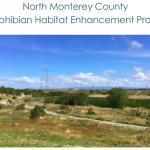North Monterey County Amphibian Habitat Enhancement Project - Interim Monitoring Report