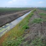 Carr Lake Restoration Site: Pre-Implementation Condition Assessment