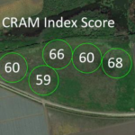 CRAM Assessment of the Watsonville Slough Farms