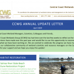 CCWG Newsletter 2020