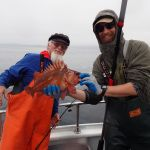 copper rockfish caught on a CCFRP trip