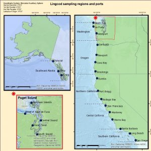 Lingcod Sampling Regions