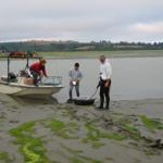 The WEMAP 2002 Intertidal Wetlands project required innovative ways to reach a site. Most sites involved using a boat to get to the shallowest point and then walking to the exposed intertidal site dragging the equipment. In some cases, we walked in mud up to our thighs or we had to skid along the surface on boogie boards.