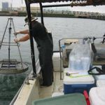 Collecting sediment for the SD TMDL study. Billy is ready to secure the grab while Rusty operates the winch. This site was in the Switzer Creek area of San Diego Bay.