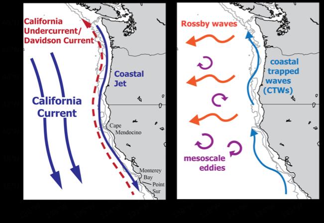 ccs-schematic-coast
