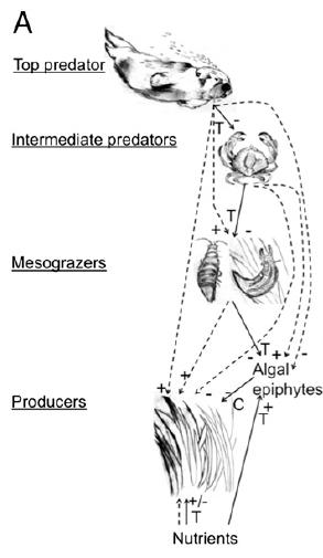 Figure 2a from Hughes et al 2013