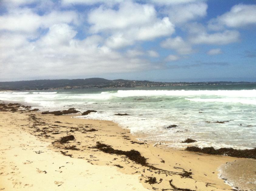 beachw1