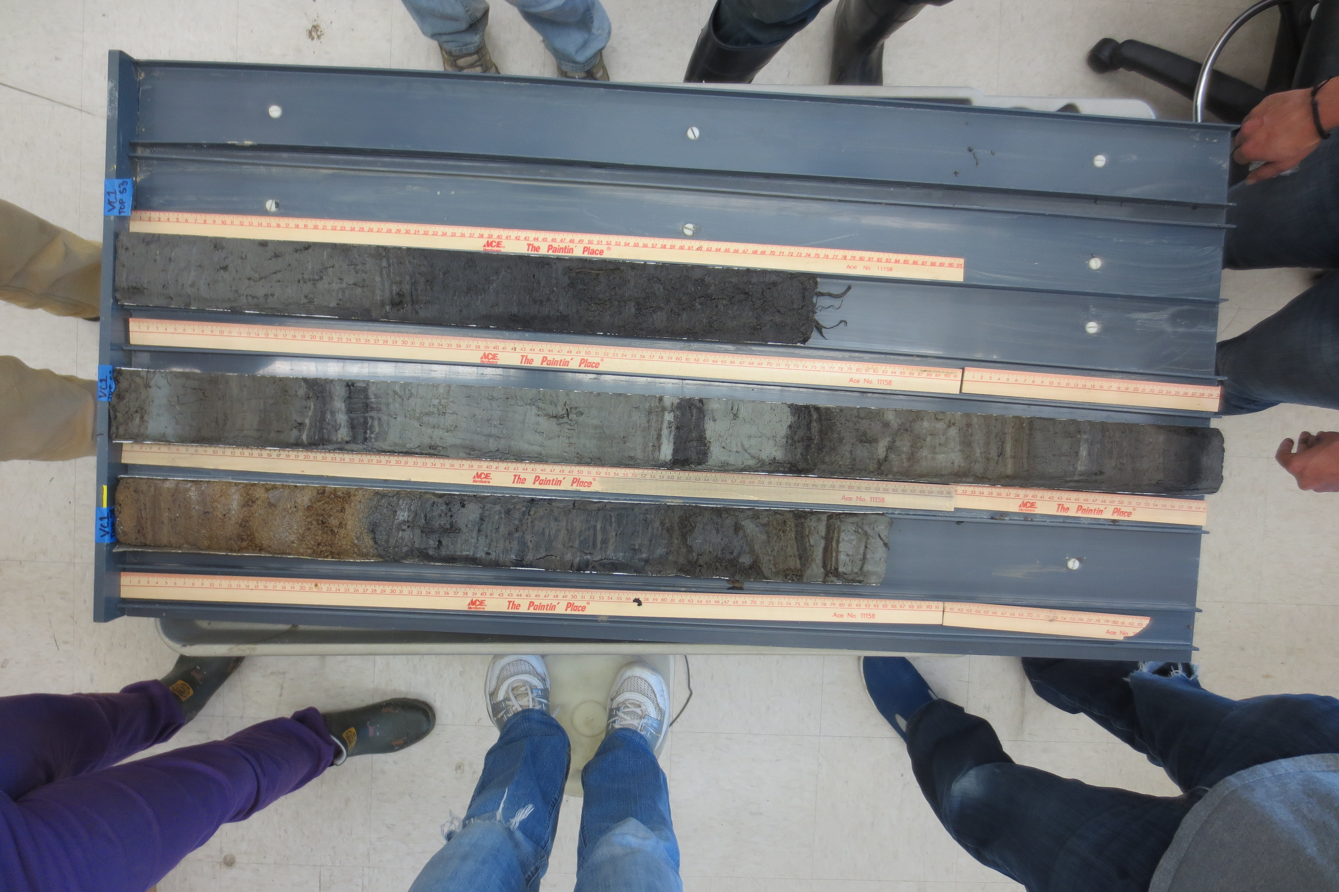 One of the cores from Pescadero Point after it has been sliced and sectioned for analysis. Photo by: Christina Volpi.
