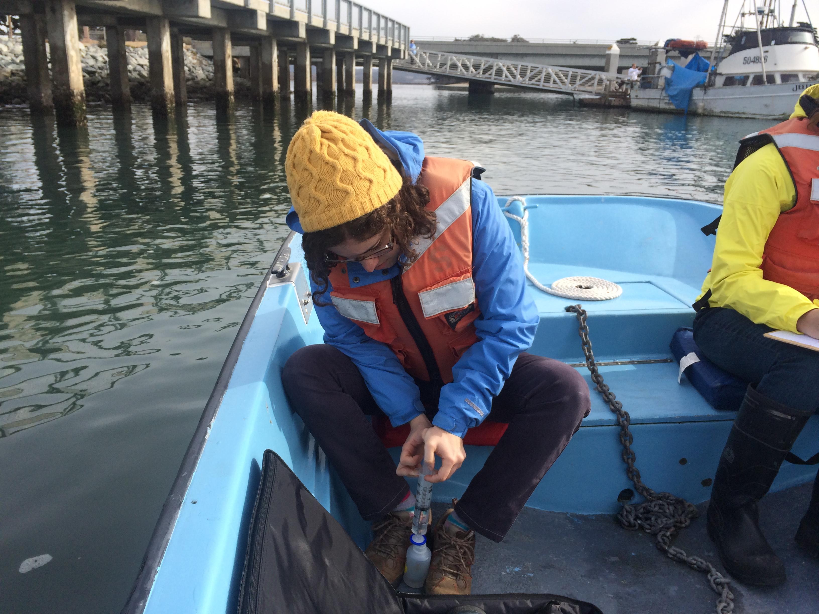 Marisa filtering seawater