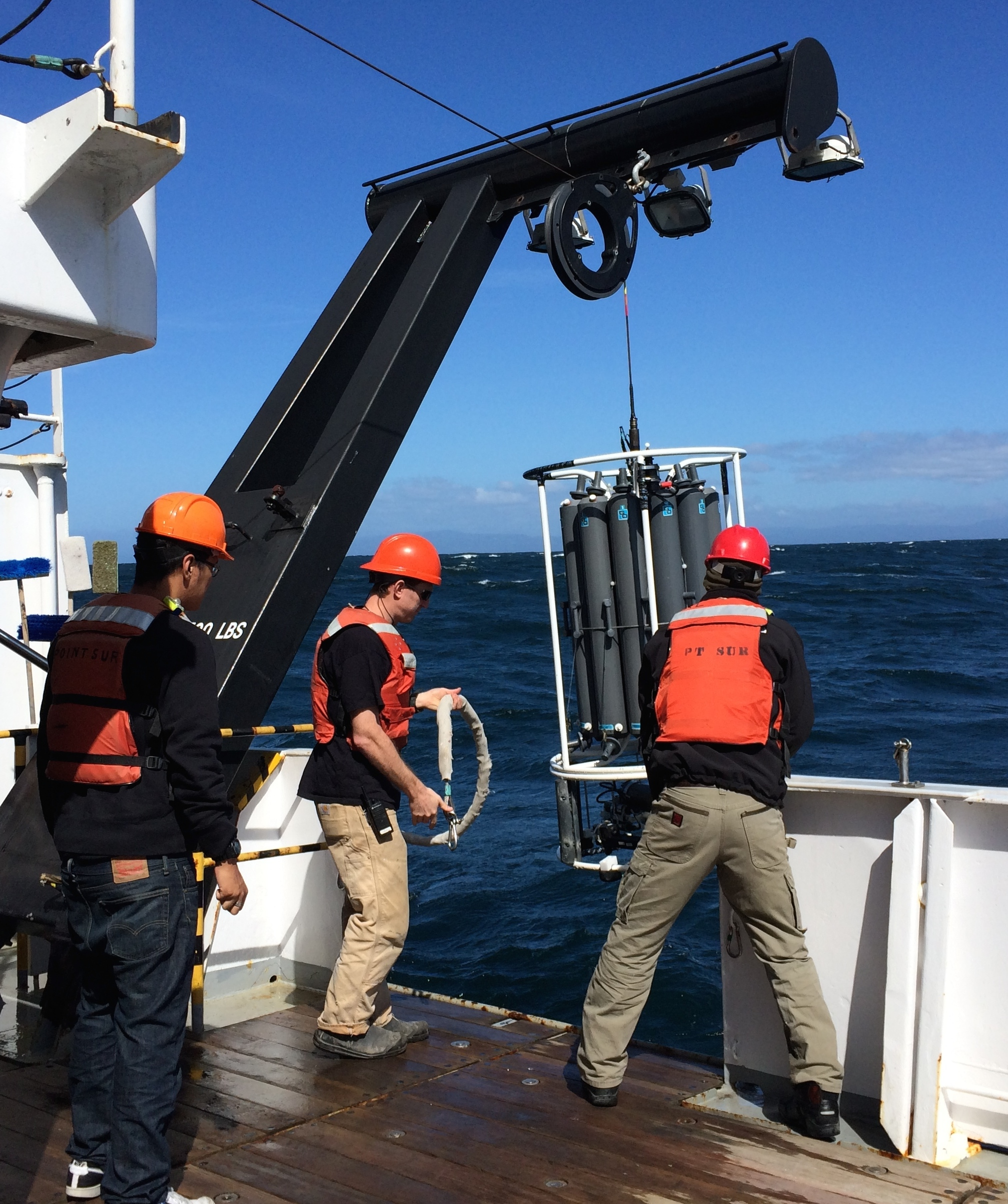 Biological oceanography students help deploy the CTD
