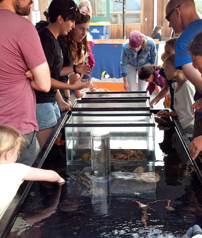Inverts touch tank