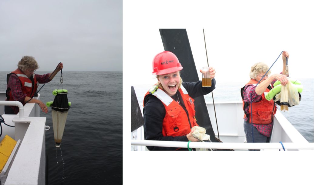 (Left) Sara Tanner reels in the neuston tow. (Above) Graduate Student Holly Chiswell is rather pleased with her sample. (Photos by Diana Steller)