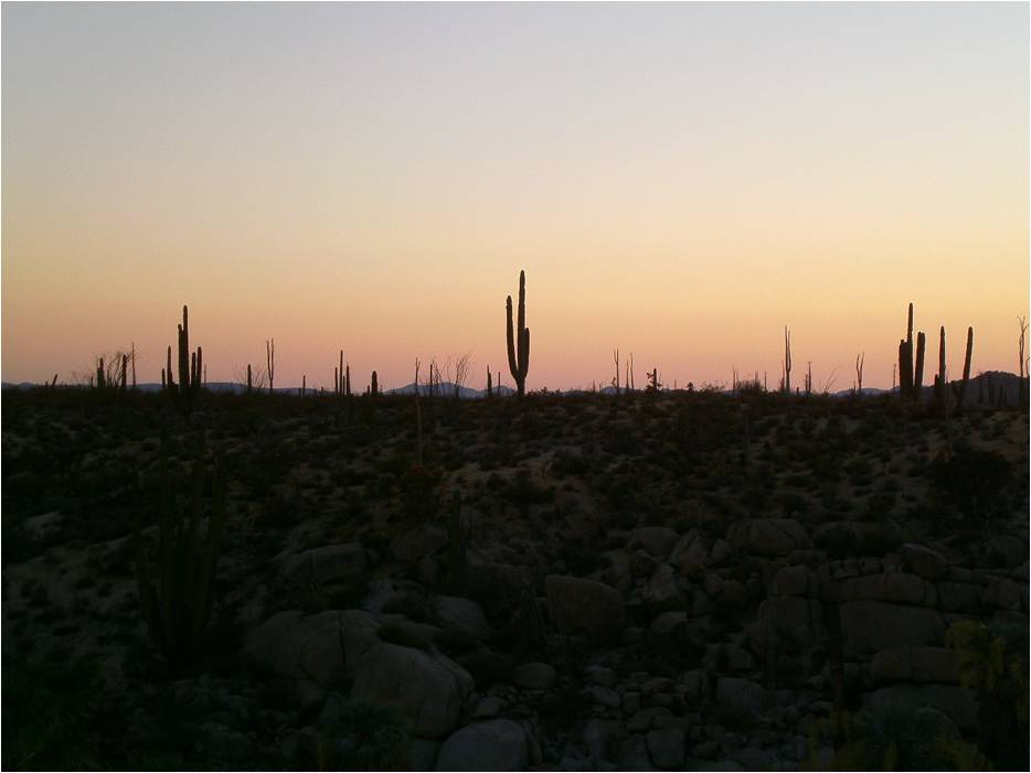 Just after sunset at our desert campsite in Cataviña, Baja California.