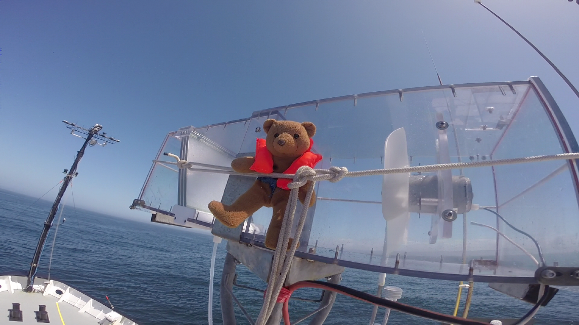 """Unofficial cruise mascot """"Bear"""" secures the fog sampler for sea."""