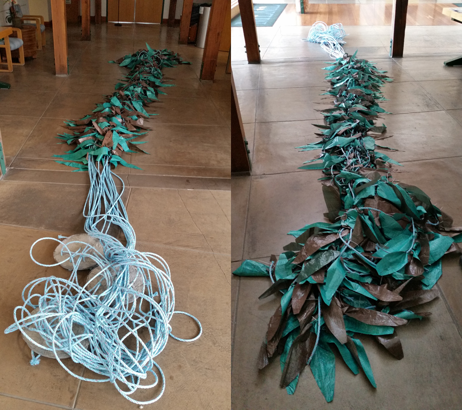 From the holdfast to the canopy, Steven Cunningham designed this kelp to mimic Macrocystis pyrifera