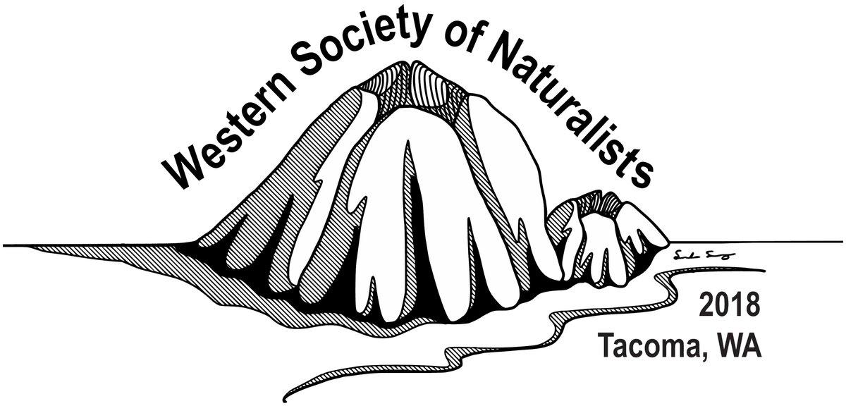 WSN logo 2018