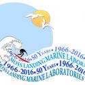 MLML 50th Anniversary Blog