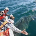 Dr. Salvador Jorgensen presents: Tracking Great White Sharks to an Ocean Desert